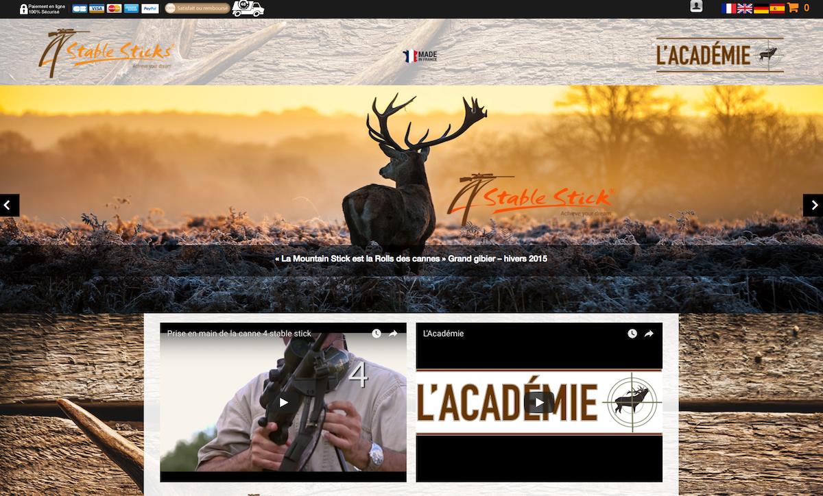 Conception Site Vitrine Stable Sticks Awb Conseils Agence Web