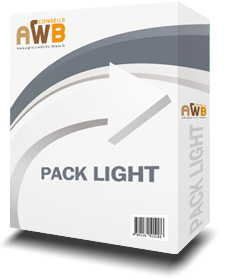 Création de sites Internet à Bordeaux - Pack Light